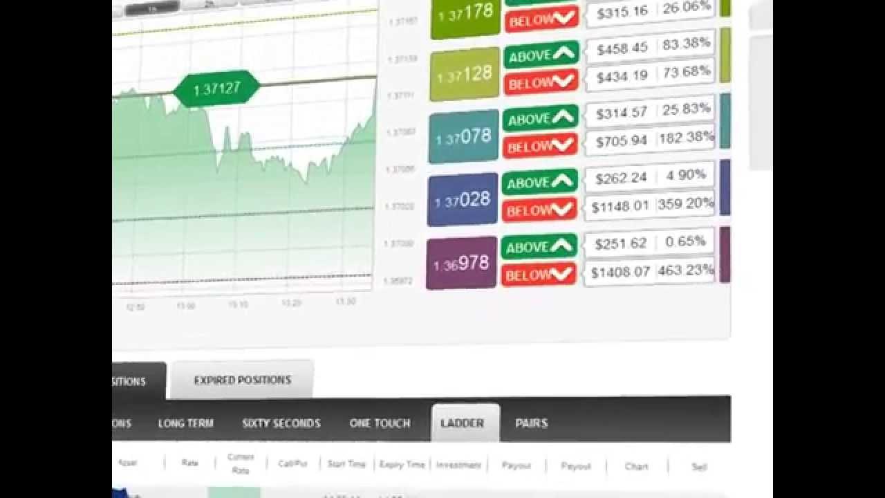 hálózati jövedelem webhely