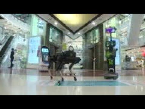 robot bevásárlóközpont videó nagy pénzt lehet most keresni